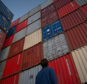 guy deciding which shipping container he wants to buy